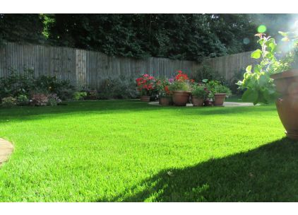 Artificial grass/turf/lawns