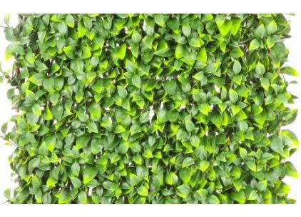 Wonder-Wal Trellis Screening Artificial Gardenia Leaf-2m x 1m