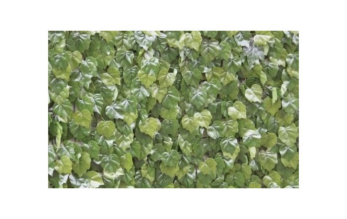 Wonder-Wal Artificial Wall Screening Virginia Creeper-1m x 1m